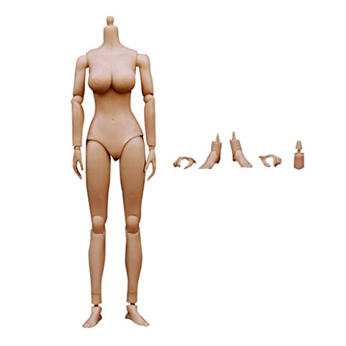 MagiDeal 1/6 Scale Xanthoderma Medium Busts Nude Female 12'' Body Model for Hot Toys Kumik Head