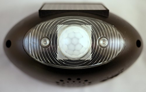 Solar Powered Motion Sensor Detector Alarm