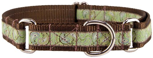 Country Brook Design Paisley Pairs Woven Ribbon on Brown Martingale Dog Collar Limited Edition - Large