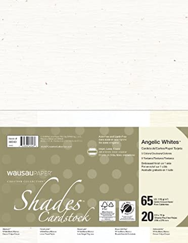 Neenah Creative Collection Shades Specialty Cardstock, 8.5 X 11 Inches, Angelic White Mix, 20 Count - Stardust Mix
