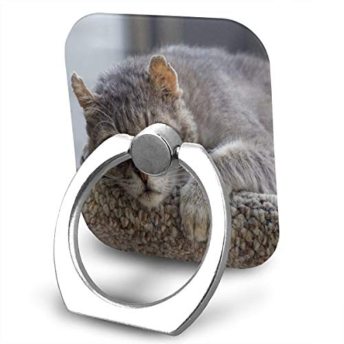 Animal Wildcat 358371 Phone Stand Holder 1 Package Metal Finger Grip Stand Holder Ring,Car Mount 360°Rotation Phone Ring Grip for Samsung Galaxy iPhone Tablet PC Smartphone Phone Ring Stent (Square) ()