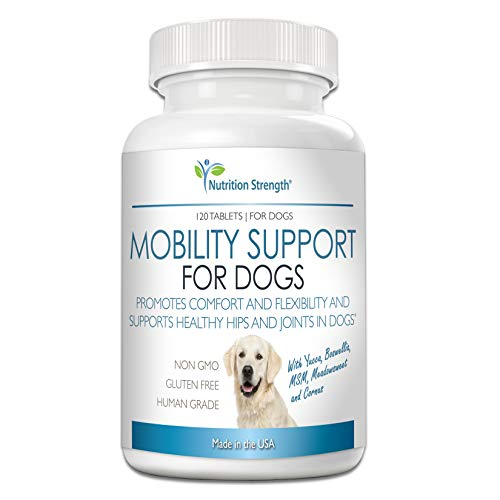 Nutrition Strength Pain Relief for Dogs Supplement, Anti Inflammatory for Dogs in Pain, with Organic Yucca, Boswellia, Meadowsweet, Cornus, Licorice and Ginger, 120 Chewable Tablets (Best Otc Anti Inflammatory Medicine)