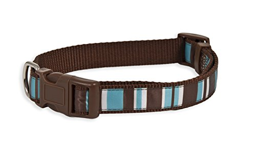 Aspen Pet Delicious Stripes Collar, Brown/Teal, 3/4
