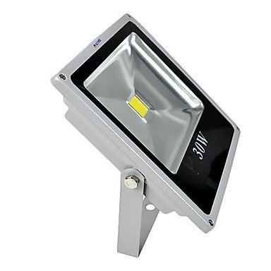 Generic-220V 30W LED warm white outdoor waterproof flood light
