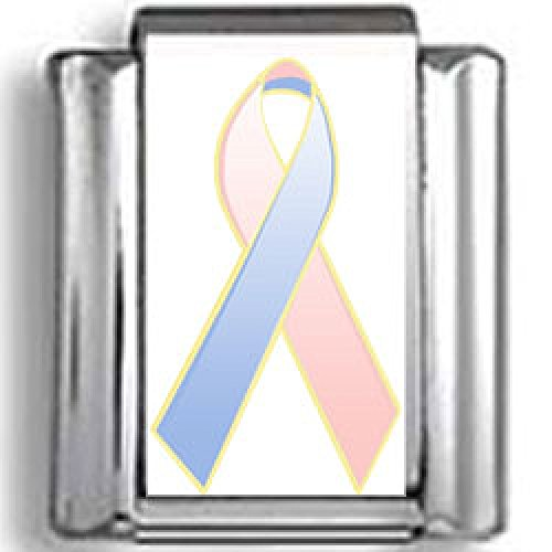 Pink and Blue Awareness Ribbon Photo Italian (Pink Ribbon Photo Italian Charm)
