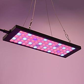 Maxmer 15W LED Grow Light Hydroponics Lamp Full Spectrum Lights Plant Light for Vegetable Garden Indoor Plant Growing Greenhouse Flower SISVIV
