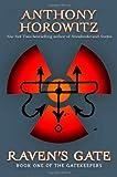 Raven's Gate (Hodder Literature)