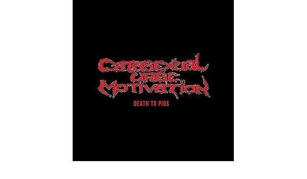 Catasexual urge motivation lyrics