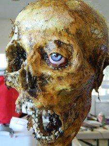 Halloween Horror Movie Prop Human Corpse Skull Head Half Skull by Dead Head Props