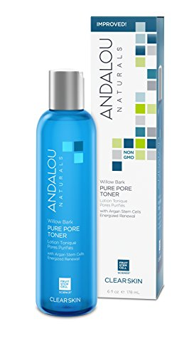 Andalou Naturals Willow Bark Pure Pore Toner, 6 Fl Oz