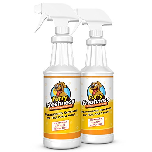 FurryFreshness Premium Pet Stain & Smell Remover - Permanently Evaporates Stains Away (2 Pack - 32oz Bottles) by FurryFreshness