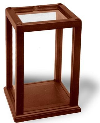 Amazon.com: Wood-Trimmed Display Case Holds And Protects ...