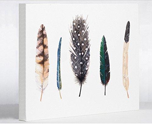 "One Bella Casa 11246WD11 Feathers 1 Canvas by Ana Victoria Calderon 11"" x 14"" Blue/Multicolored from One Bella Casa"