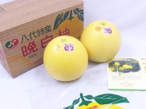 """熊本県八代特産 """"晩白柚"""" ばんぺいゆ Lサイズ 2玉"""