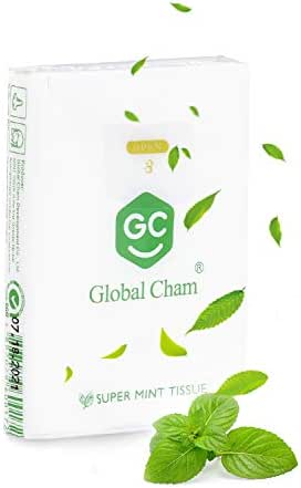 Global Cham Super Mint Breathing 4 Ply Soft Facial Tissues Sinusitis Headache Relief 12 Tissues per Go Pack for Sneeze (White 1 Packs)