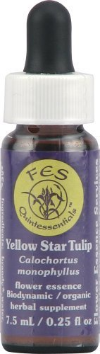 Flower Essence FES Quintessentials Yellow Star Tulip Supplement Dropper -- 0.25 fl oz by Flower Essence (Fes Quintessentials Flower Essences)