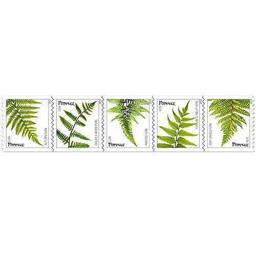 USPS Ferns Forever Stamps - 20 Stamps (Baby Shower Postage Stamps)