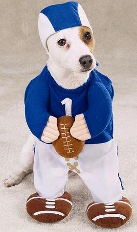 MFR DISCONTINUED 051614 Football Fever Dog Costume LARGE ()