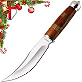 Grand Way Fixed Blade Knife - Hunting Knife - Clip-Point Fishing Bushcraft Knives with Sheath - Best 420 Stainless Steel Classic Big Sharp Fix Hunting Knife with Wood Handle and Glass Breaker FB 623