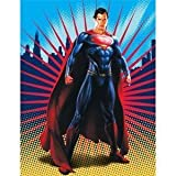 Superman Silk-Touch Throw