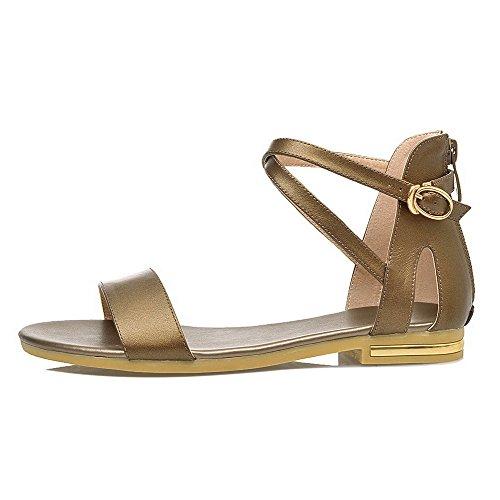 AalarDom Mujer Cremallera Puntera Abierta Mini Tacón Pu Sólido Sandalias de vestir Gold-SHI