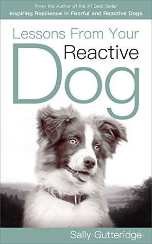 Lessons From Your Reactive Dog by Sally Gutteridge ebook deal