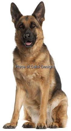 1/4 Sheet ~ German Shepherd ~ Dog Breed ~ Edible Cake/Cupcake Topper - D4912 (German Shepherd Cake Topper)