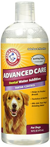 Arm Hammer Dental Rinse 16 Ounce product image