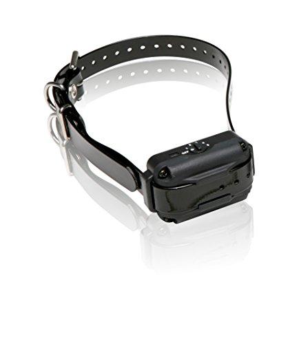 Dogtra EF3000 Dog Collar, Gold by Dogtra (Image #1)
