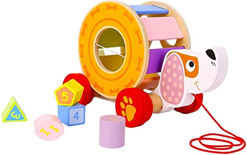 Pidoko Kids Pull Along Dog Puppy - Walking Toys for 1 Year Old and Up Boys and Girls