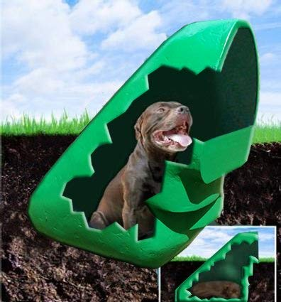 DogEden 60A Underground Dog House, with Anchor (Green)