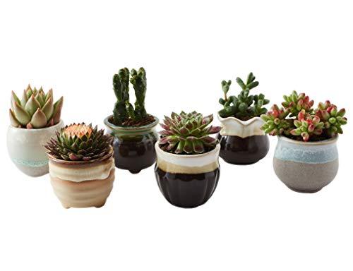SUN-E 6 in Set 2.5 Inch Ceramic Flowing Glaze Black&White Base Serial Set Succulent Plant Pot Cactus Plant Pot Flower Pot Container Planter Perfect Gife Idea by SUN-E