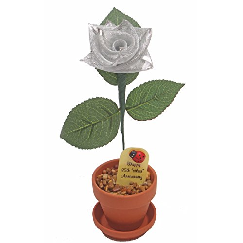 25th Wedding Anniversary Gift Potted Silver-ribbon Rose