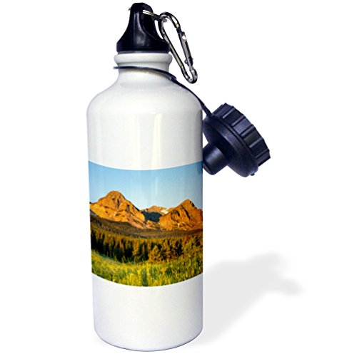 3Drose Danita Delimont   Glacier National Park   Wildflowers  Cut Bank Valley Of Glacier National Park  Montana   21 Oz Sports Water Bottle  Wb 231076 1