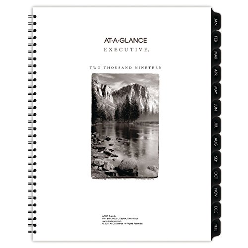AT-A-GLANCE 2019 Weekly & Monthly Planner Refill, 8-1/4