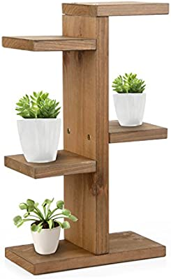 Prime Amazon Com Mini Plant Stand Uhbgt Wooden Diy Tabletop Squirreltailoven Fun Painted Chair Ideas Images Squirreltailovenorg