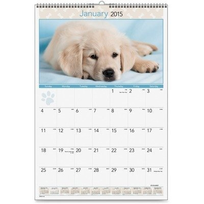 Puppies Photographic Monthly Wall Calendar, 15-1/2 x 22-3/4 (Calendar Photographic Monthly Puppies Wall)