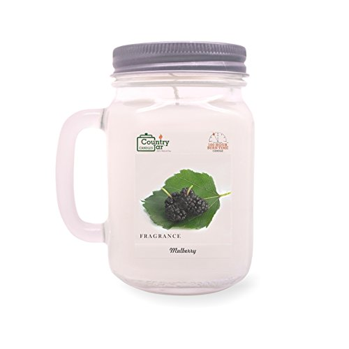 Country Jar Mulberry Soy Candle (14.5 oz. Mason Jar) Spring Pick-3 Sale! See Details. ()