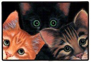Peeping Toms Porch Doormat