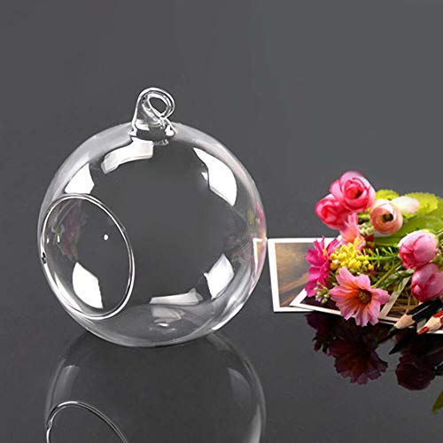 (Bright Sun 200 Pcs Hanging Clear Glass Globe Ball Candle Holder Flower Air Plant Terrarium #PDNH )