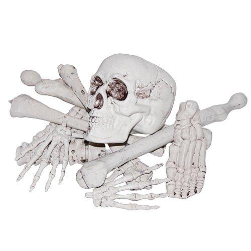 Sunstar Industries Hanging Bag of Bones Prop -