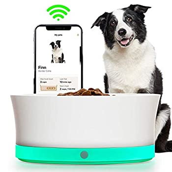 Image of Obe ProBowl Smart Dog Food Bowl for Medium and Large Dogs | Personalized Feeding Bowl For Portion Control, Tracking and Reorder Food Automatically | No Feeder Dispenser | White Pet Supplies