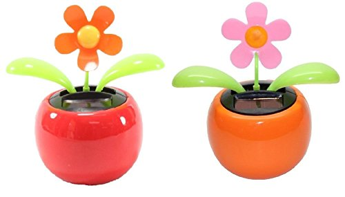 - Set of 2 Dancing Flowers ~ 1 Orange 1 Pink Daisy in Assorted Colors Pots Solar Toy Car Dashboard Home Decor Birthday Congratulatory Easter Gift