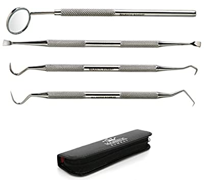 Dental Hygiene Tool Set - Stainless Steel Dental Tooth Pick, Mouth Mirror ,Tarter Scraper and Plaque Remover - Dental Tool Kit Is Ideal for Personal Use & Pet Friendly-free Protective Case