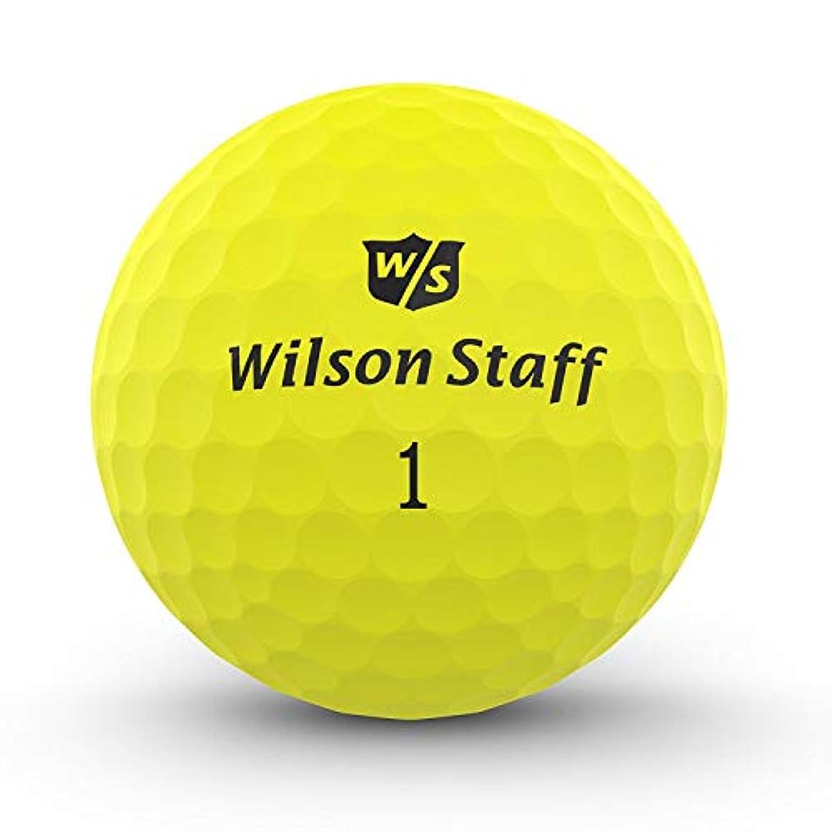 [해외] WILSON 울트라 레이디스 왼손잡이 슈퍼 롱 골프 클럽 세트 카트 화이트&볼 부착