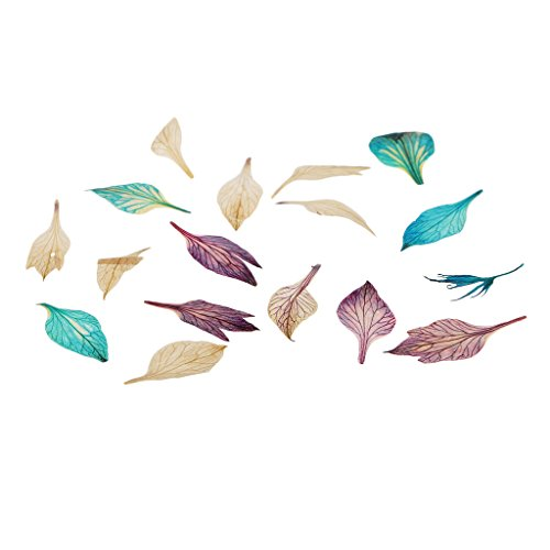 Baoblaze Multi-color Pressed Dried Flower Leaves Kit for Candles,Soap Making,Resin Casting for Diy Handmade Crafts - 2# - 17 x 5 mm