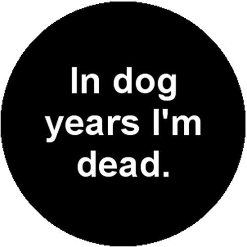 Badge (Dead Looking Costumes)