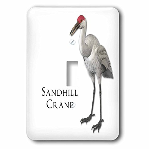 3dRose lsp_51595_1 Sandhill Crane Shorebird Single Toggle (Crane Switchplate)