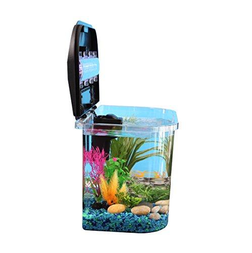 Review Panaview 5-Gallon Aquarium Kit