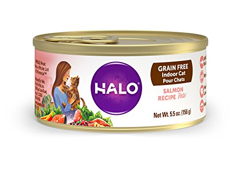 Halo Holistic Wet Cat Food for Indoor Cats, Grain Free Salmon Pâté 5.5 OZ of Indoor Cat Food, 12 Cans